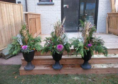 Three winter planters_1024x768